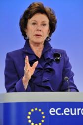 Ανοιχτά πρότυπα και μειωμένο ΦΠΑ για τα ebooks ζητά η Ευρωπαία Επίτροπος Νέλι Κρους