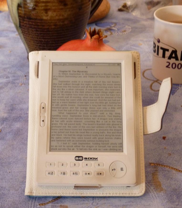 20 θήκες πολυτελείας εντελώς δωρεάν για τους κατόχους BeBook Mini