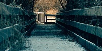 """Κλήρωση για το ebook """"Το μαύρο μονοπάτι"""" της Asa Larsson από τις Εκδ. Μεταίχμιο"""
